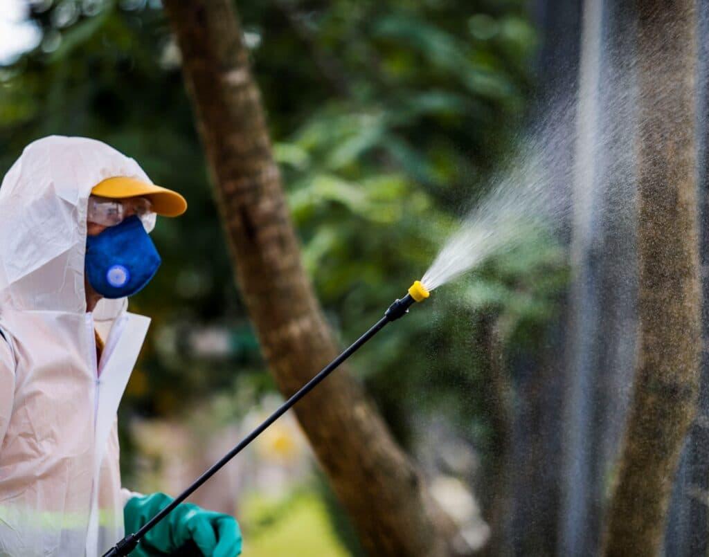 higienização coronavirus brasilia