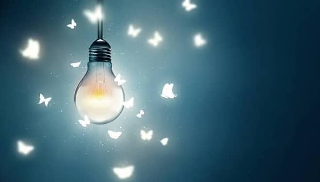 como acabar com insetos de luz